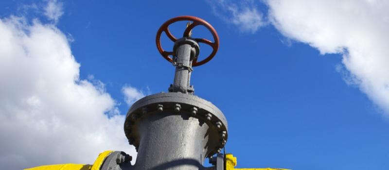 Керівник DiXi Group взяла участь у Газовому форумі Енергетичного Співтовариства