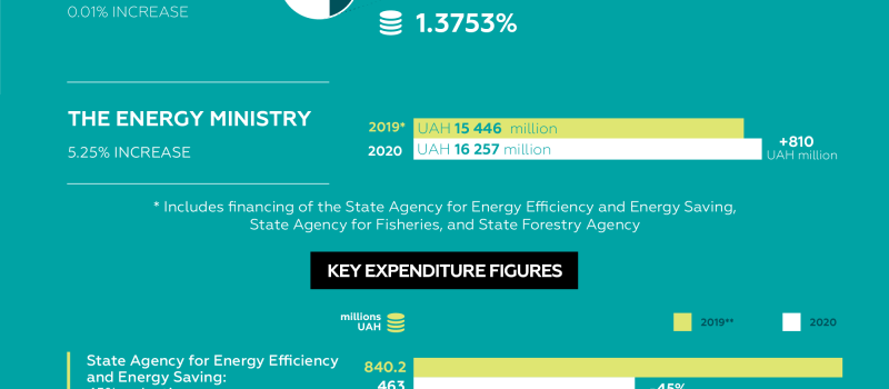PUBLIC SPENDING IN ENERGY: 2019-2020